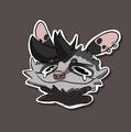 Anxiety Opossum avatar