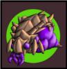 lolcoptr avatar