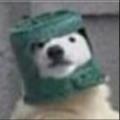 Pig Republic avatar