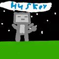 Huskey Gamer avatar