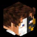 Wolf-Jester avatar