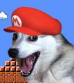 Mario28037 avatar