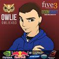 Owlie453 avatar