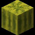 0103 avatar