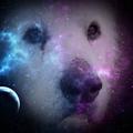XLegomenon avatar