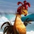 KnockoutAU avatar