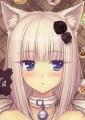 redwolf55 avatar