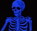 FindinqMolly avatar