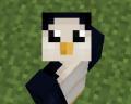 Anonnyz avatar