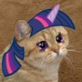 Magemaster1234 avatar