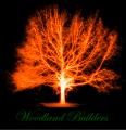 Woodland Gaming avatar