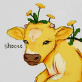 shooee avatar