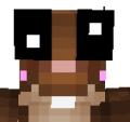 DerpySquirrelzYT avatar
