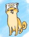 Sheeper Builds avatar