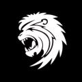 xMast3r avatar