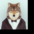 CyqnzZ avatar