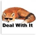 Sox The Fox 121 avatar