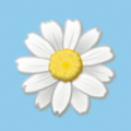 flowerpiig avatar