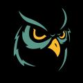 OwlNoir avatar