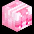 Aiowo avatar