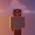 PockMC avatar