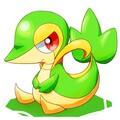 Knox_y avatar