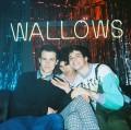 wallows avatar