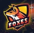Fox1MX avatar