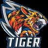 Taha Tiger avatar