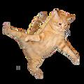 cherrycutie avatar