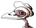 strange_catto avatar