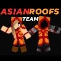 AsianRoofsTeam avatar