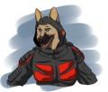 StalkerO1 avatar
