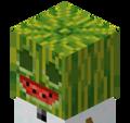 Undead Melon avatar