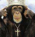 Macehouse avatar