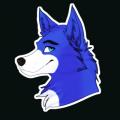 bluethefoxyt avatar