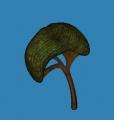sonicdude143 avatar
