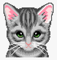 PixelKitties avatar