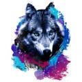 The_Diamond_Dawg avatar