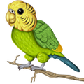 Praeputius avatar