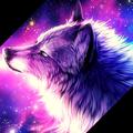 lifeless_wolf avatar
