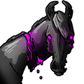 Meltrind avatar