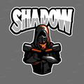 LittleShadow917 avatar