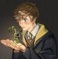 VanBel2007 avatar