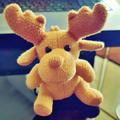 J Fox Stargazer avatar