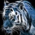 Fabricio_3582 avatar