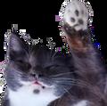 ImpalaBot avatar