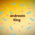 androwinKing avatar