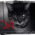 The_Aztral avatar