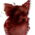 yorkmouse avatar